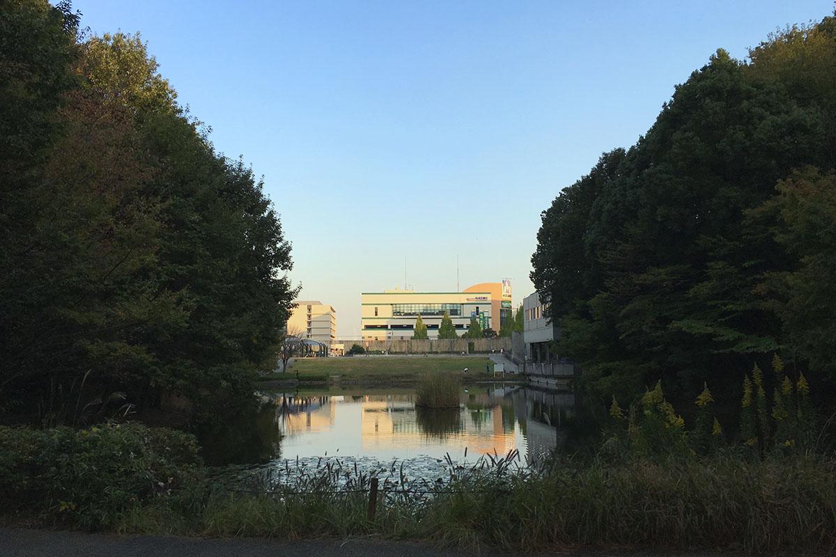 宮谷戸の大池