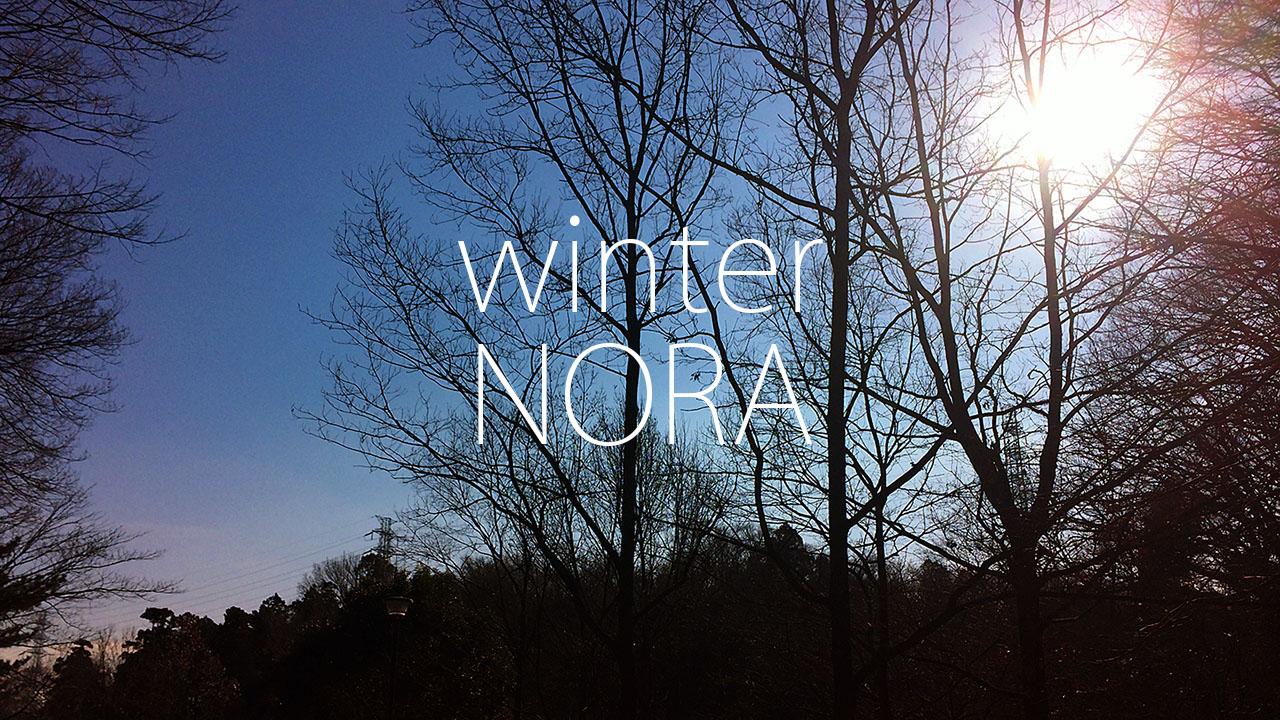WinterNORAITイメージ