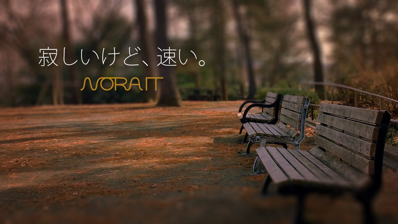 近所の公園は寂しいけど早かった〜NORA IT は高速なのか?report.1