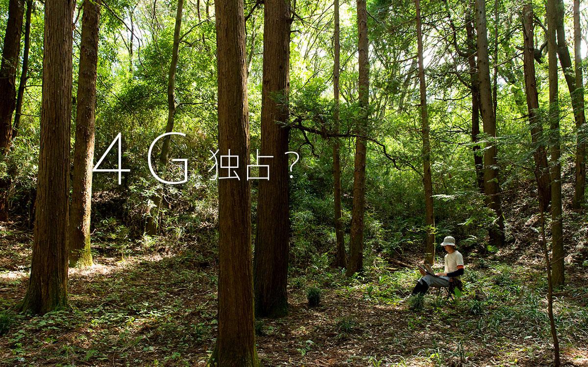 4G独占?