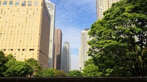 新宿中央公園から都庁方面へ