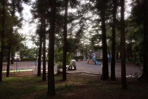 つつじヶ丘公園全景