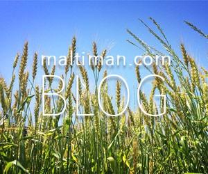 maltimanのブログ