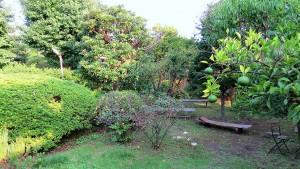 古民家の庭イメージ