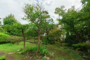 蕾の家の庭