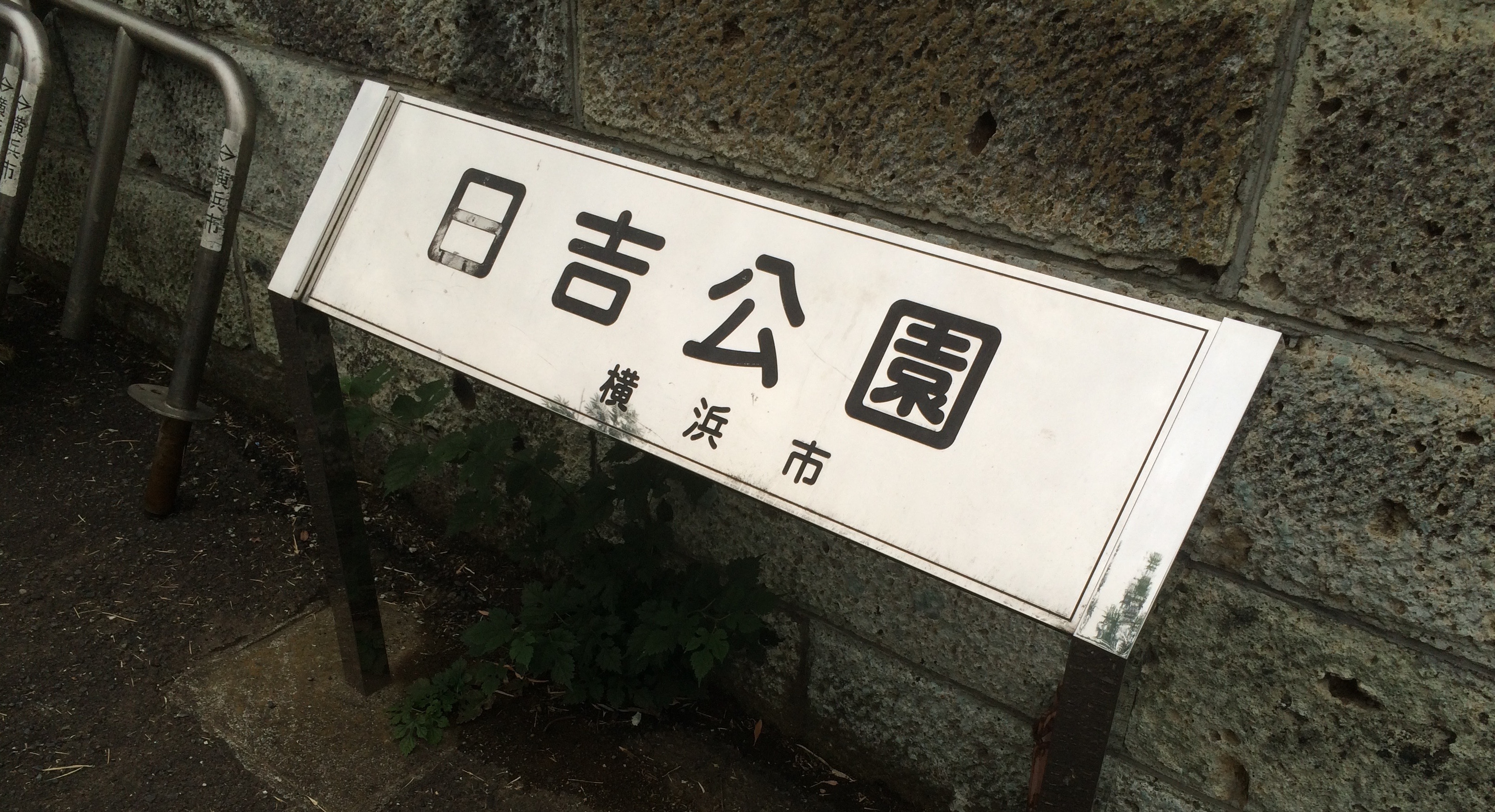 ゆねばのNORA ITレポート〜日吉公園編〜
