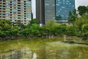 檜町公園の池