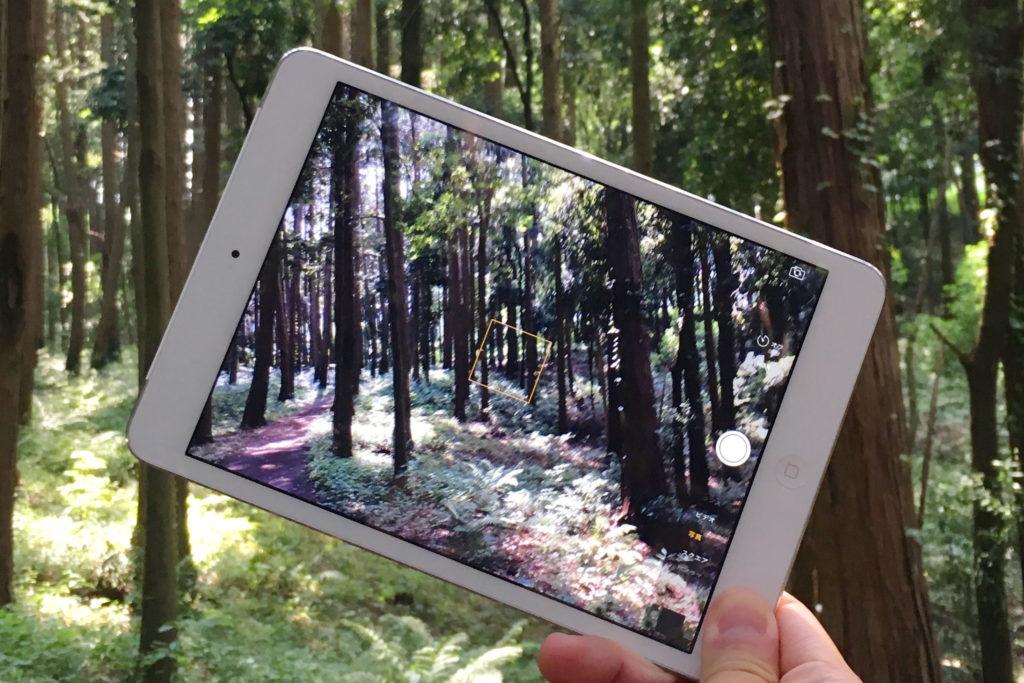 iPad森の中